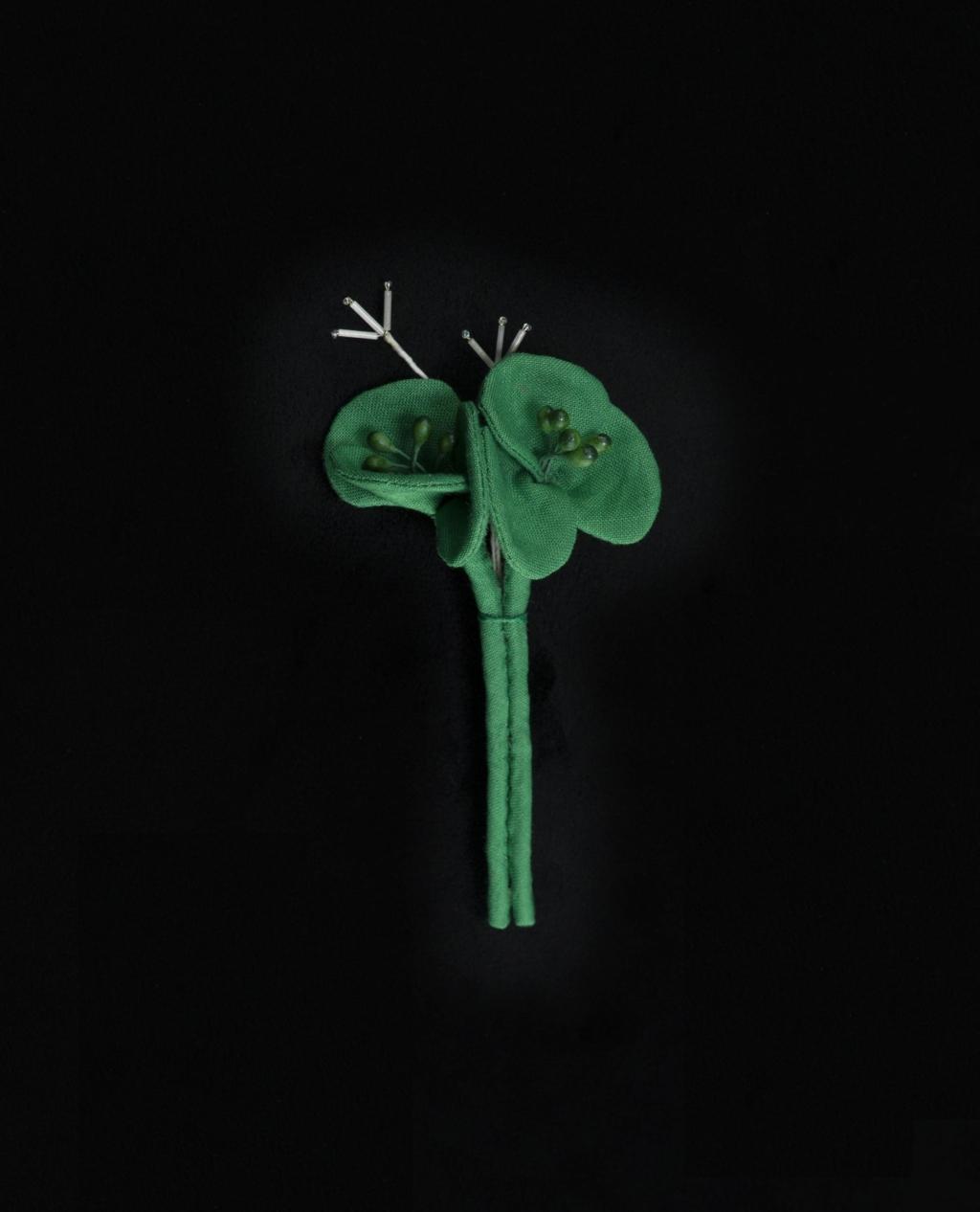 isee-produit-les-fleurs-grenouille-n175