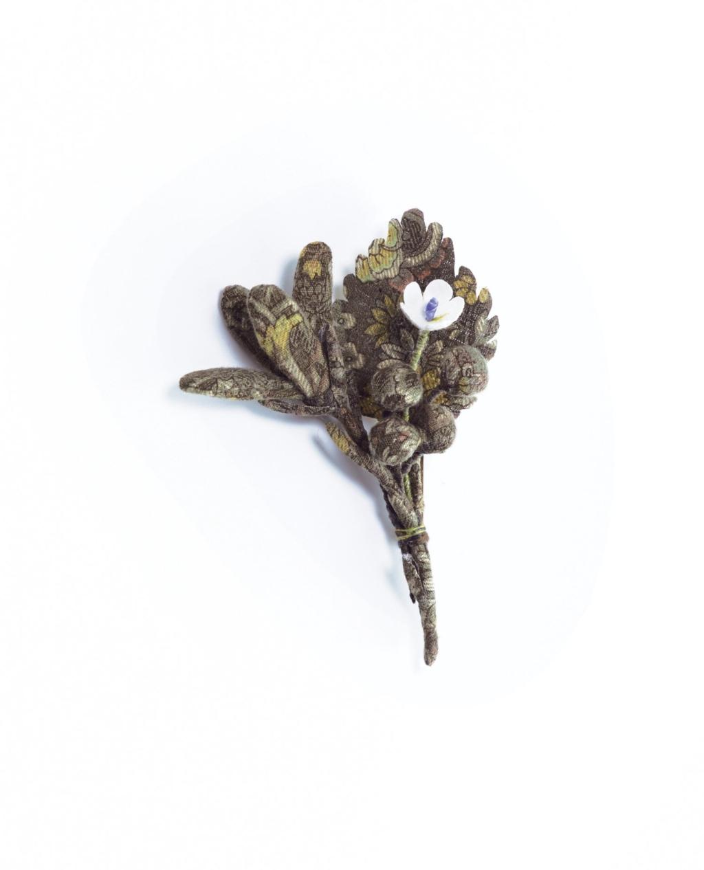 isee-produit-une-fleur-dans-mon-salon-n°173
